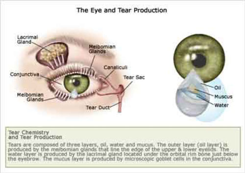 What is Dry Eye? - Specialized Eye Care